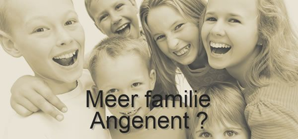 meer familie Angenent