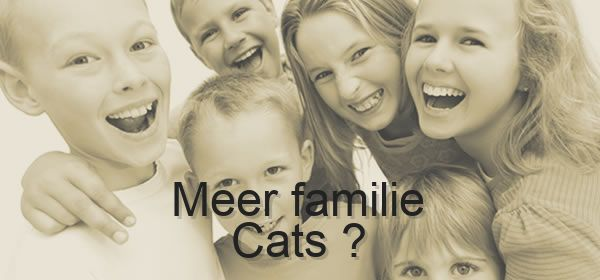 meer familie Cats