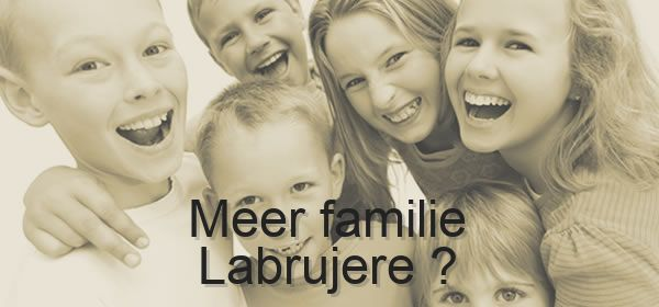 meer familie Labrujere