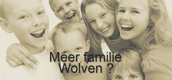 meer familie Wolven