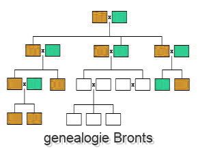 genealogie Bronts