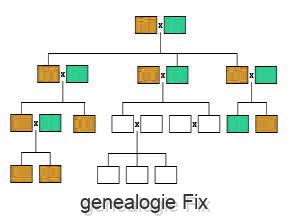 genealogie Fix
