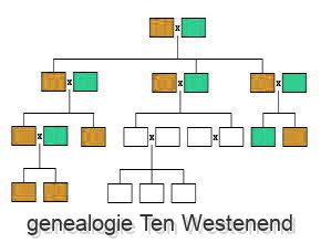 genealogie Ten Westenend