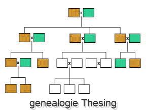 genealogie Thesing