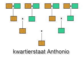 kwartierstaat Anthonio