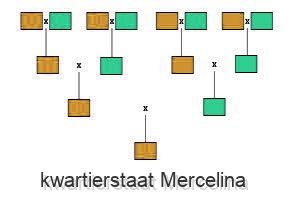 kwartierstaat Mercelina