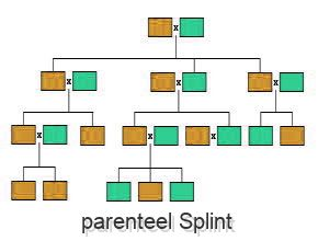 parenteel Splint