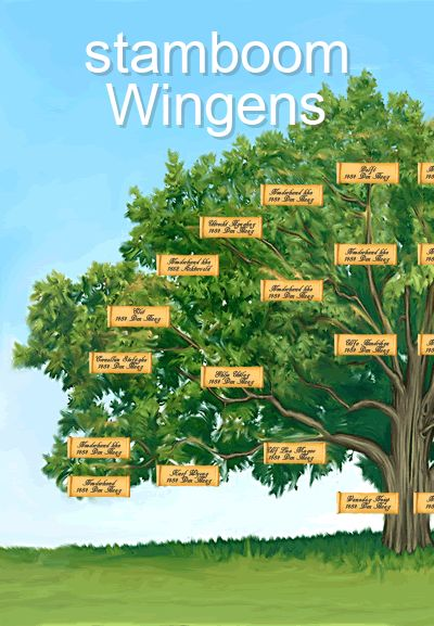 stamboom Wingens