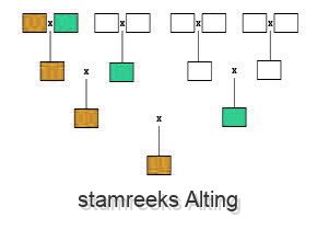 stamreeks Alting
