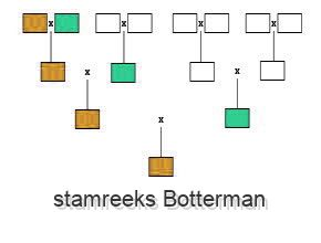 stamreeks Botterman
